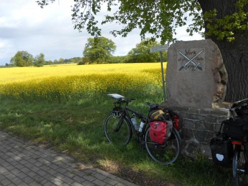 Bild 025 - BvH Frühling am Elberadweg DSCN1768
