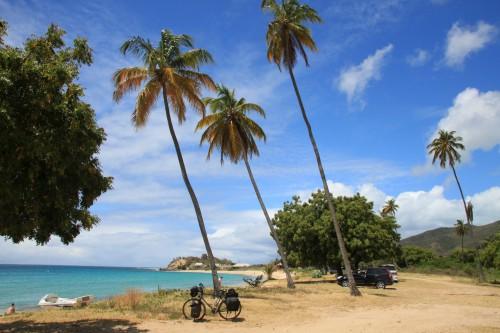 Bild 029 Frank DD Palmenstrand in Old Road auf Antigua - Frank DD