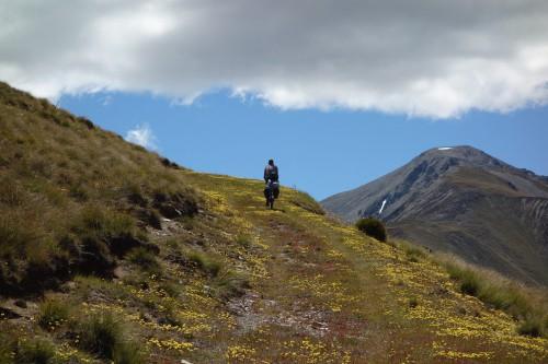 Bild 044 dcjf Auf dem Melina Ridge Trail (NZ)