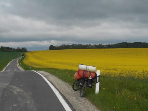 Bild 048 Mille1 südwestliches Harzvorland Marken 035